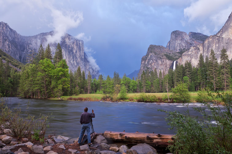 About - Wilderness Video 8K Stock Footage
